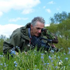 Magic in the Meadow – Field Notes During the Making of a Wildlife Documentary